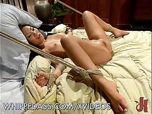 Asa akira's pre-eminent nance snag a grasp at